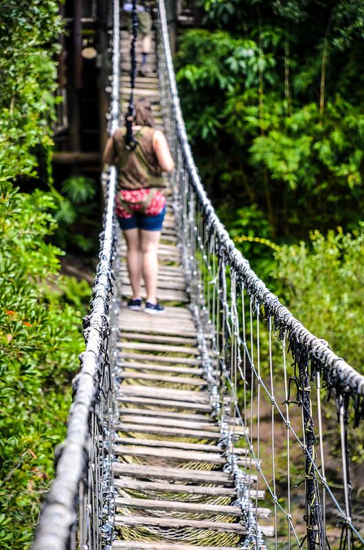 Melissa bridge WAT AK