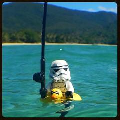FISH ON! FISH ON!