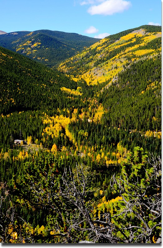 Fall colors, Mount Evans Scenic Byway, Colorado (33)