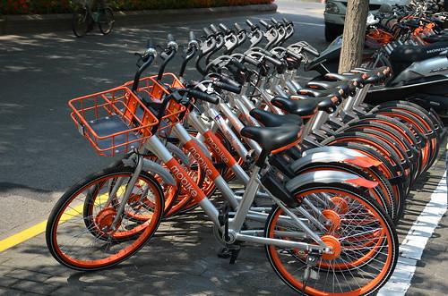 Environmentally friendly public transport