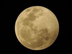 Moon 1.