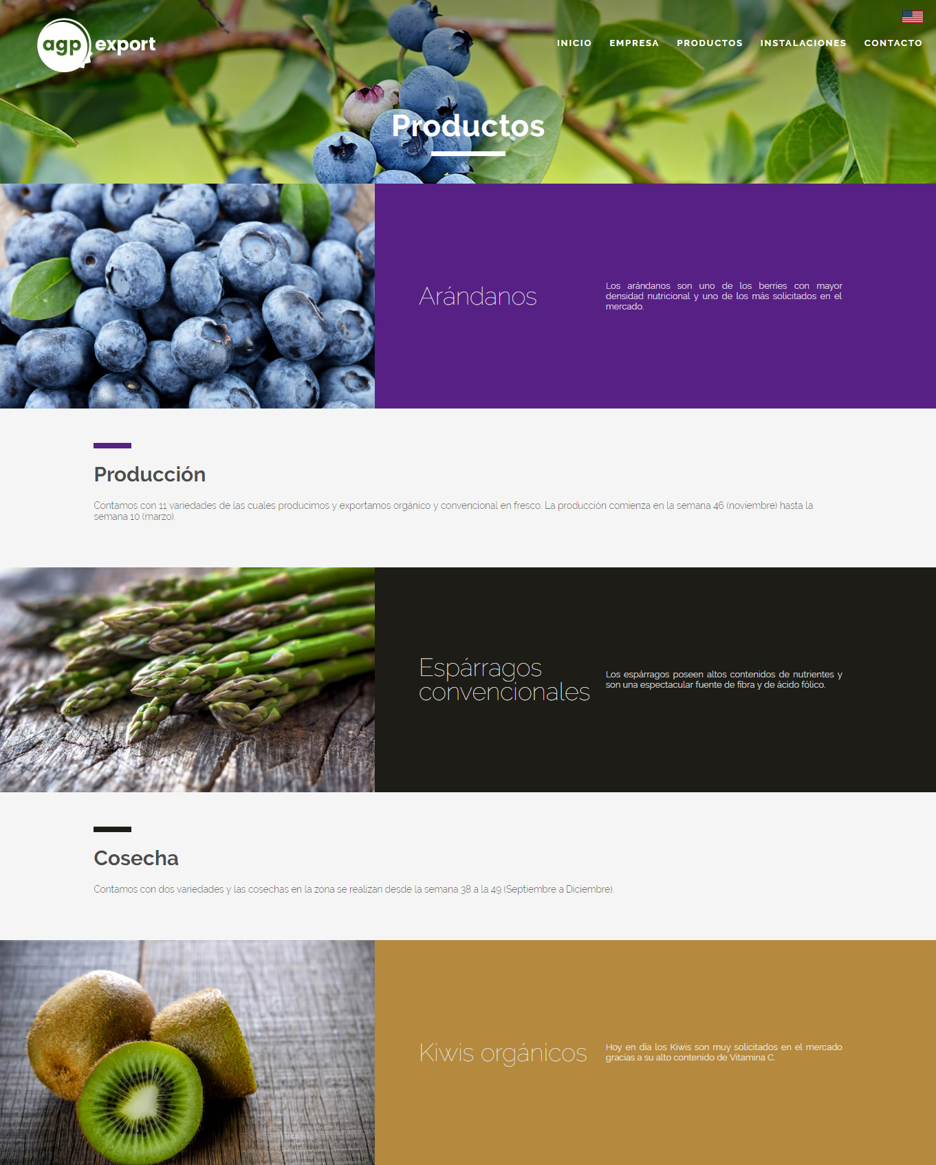 Sitio Web - AGP Export