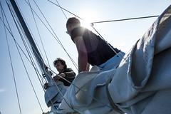 Sailing - Oosterschelde