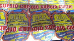Международный турнир WKF «International Dojo Cup»44