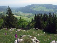 Mont Tendre_03