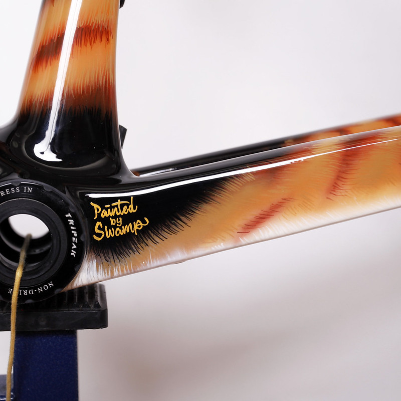 Merida Carbon Frame Repainted by Swamp Things