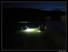 Plongée de nuit à Grosbois