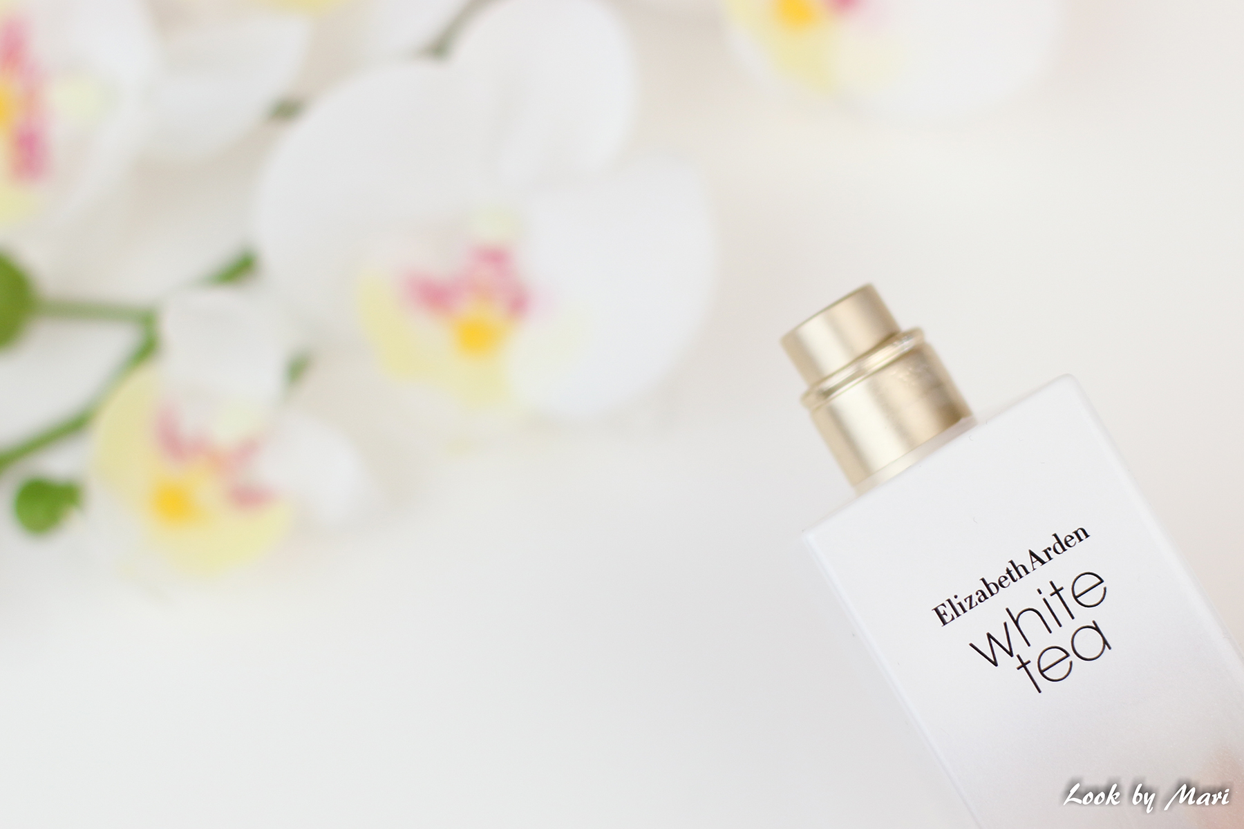 6 white tea perfumes parfumes the best the bests blog review