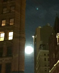 Full moon between two buildings on Beekman St