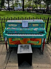 Nature Is Watching You  [from Sing For Hope Pianos]