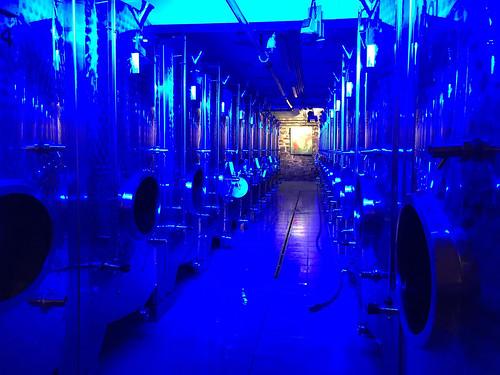 19 - Blaue Weinkelterei - Weingut Allendorf