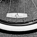Elevated Bicycle Tire