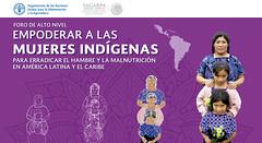 Foro Empoderar a las Mujeres Indígenas
