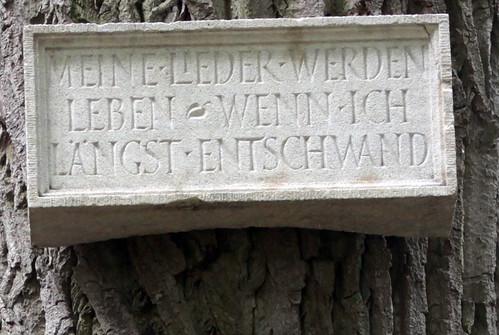 Münster17 136
