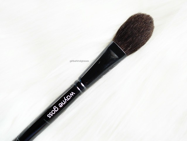 Wayne Goss The Air-Brush3