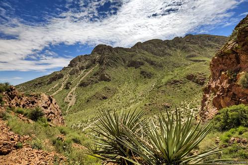 elpaso franklinmountains sky mountains desert texas yucca clouds landscape canon5dmarkiii canonef1635mmf4lisusm