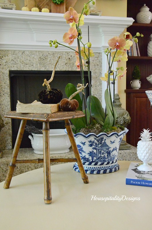 Blue and White-Orchid-Autumn Decor-Housepitality Designs