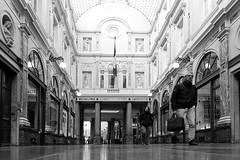 Galerie du Roi / King's Gallery