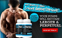 http://www.findfitnessidea.com/test-factor-x/