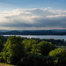Bodensee (Höri)