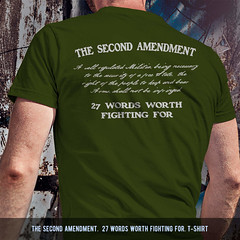 The Second Amendment.  27 Words Worth Fighting For. T-Shirt