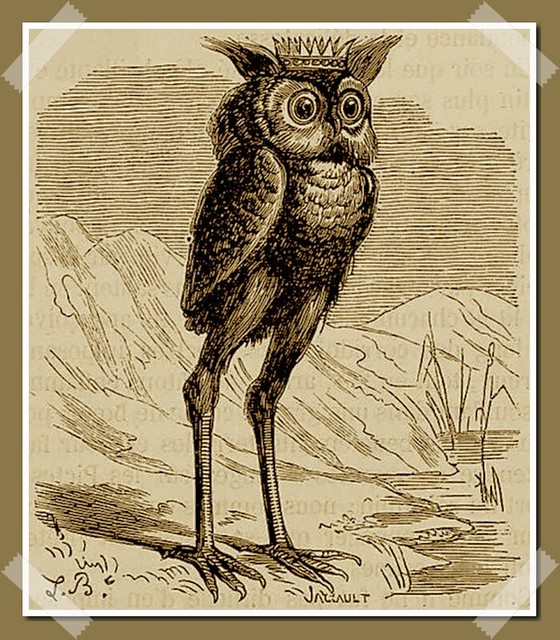 Stolas as depicted in Collin de Plancy's Dictionnaire Infernal, 1863 edition.