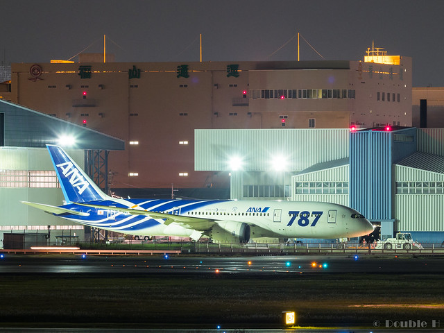 Itami Airport 2017.9.28 (30) JA802A / ANA's B787-8 commemorative painted of first delivery