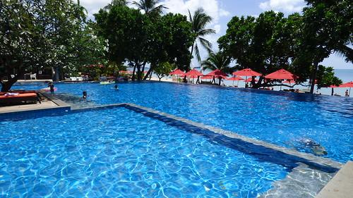 今日のサムイ島 8月24日 のんびり静か!ニュースタービーチリゾート