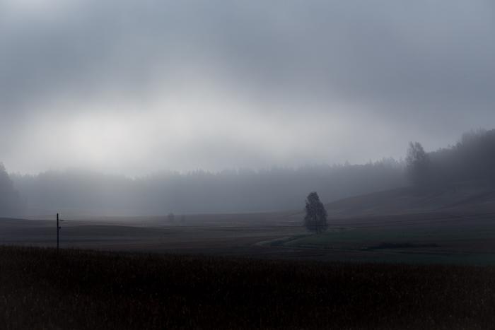 syksy mv mustavalkoinen mustavalko black and white simple maisema sumuinen sumu aamulla peltomaisema  (1 of 1)