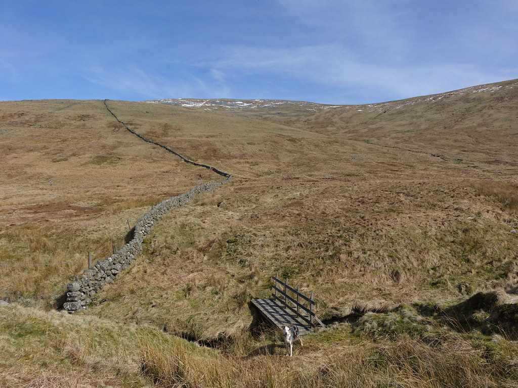 On Cairnsmore of Carsphairn