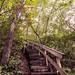 Small photo of A Long Way Up - John A. Latsch State Park, Minnesota