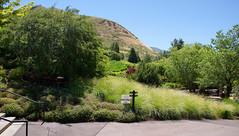 062317 Red Butte Gardens 215