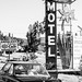 Check in at the Daffodil Motel by CEOSCOTTeVEST