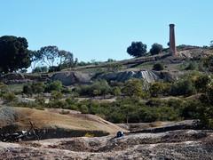 Revegetating a Mine