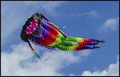 Clontarf Beach Redcliffe KiteFest 2017