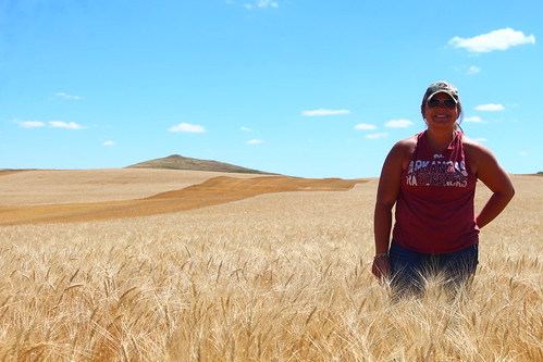 A rare photo of me in the wheat field... ha ha!