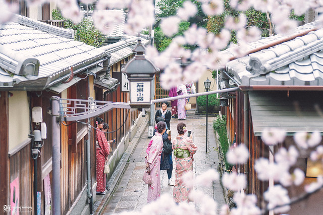 十年,京都四季 | 卷四 | 那兒春色滿城 | 17