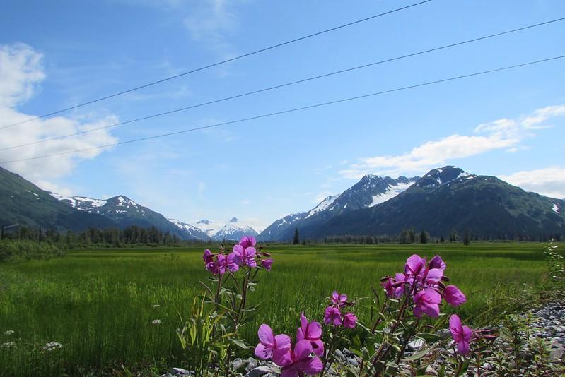 Near Portage Glacier Road