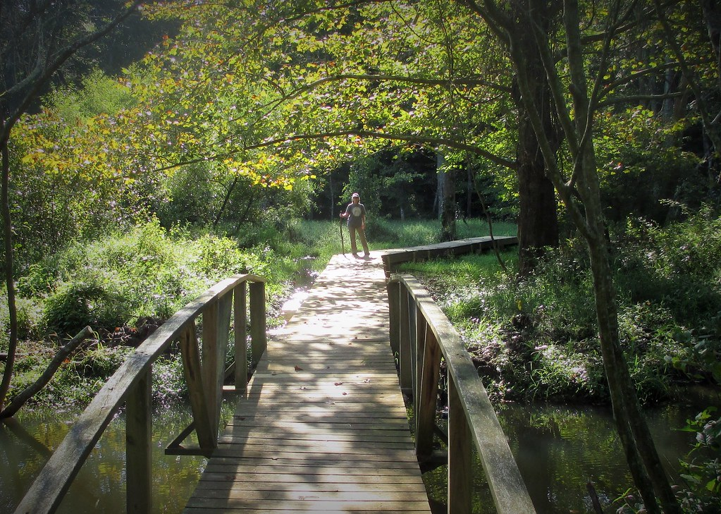 Seg8-Lg15-Steve Harrison-Osprey Trail