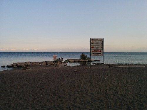 Warning by rocks #toronto #woodbinebeach #beaches #lakeontario #evening #latergram