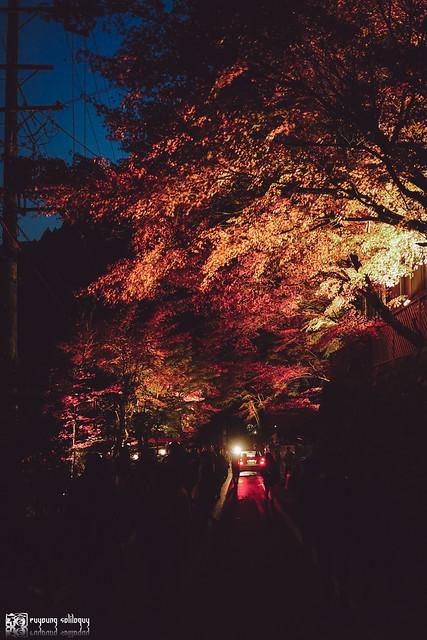 十年,京都四季 | 卷二 | 年月輪轉 | 18