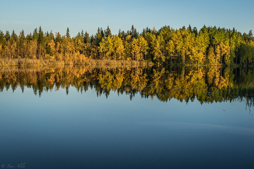 haapajärvi reservoir raahe finland lake water autumn fall colors reflection forest trees calm evening august