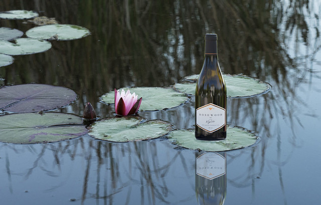 White Wine on Lily Pad
