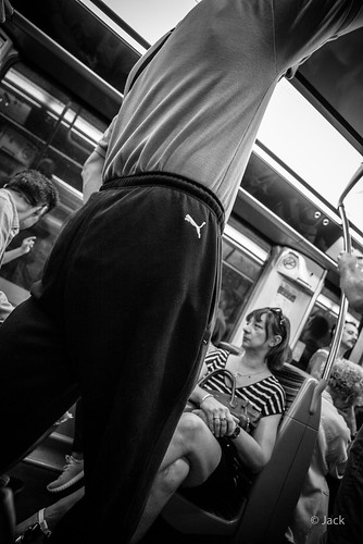 un puma dans le métro