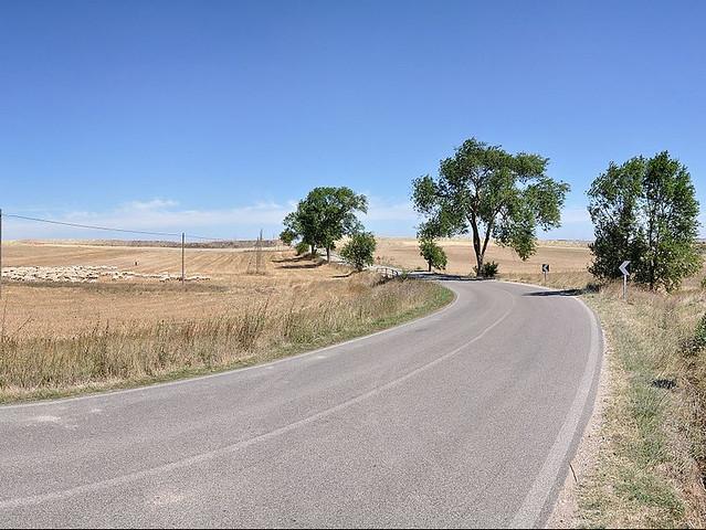 Strada_Provinciale_Matera-Gioia_del_Colle_-_Near_Matera,_Italy_-_August_17_2010