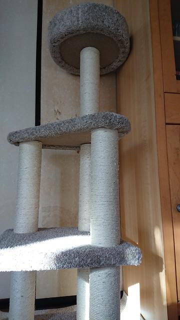 Amazonベーシックのキャットタワー Lサイズ