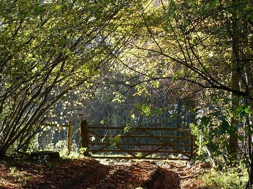 Polesden Lacey estate