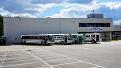 WMATA Buses On Display @ 2017 Bus Roadeo