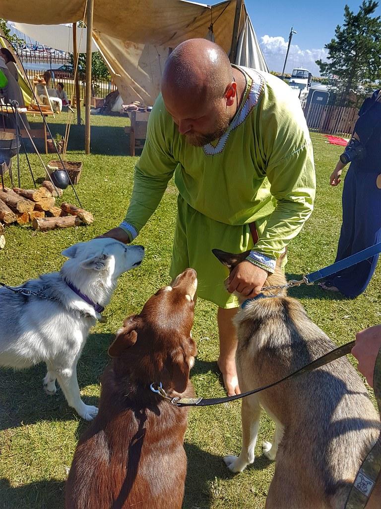 Icelandic Festival Gimli Viking Village Husky Pets