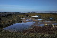 Берег океана во время отлива. Рейкьянес, Исландия